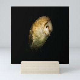 Barn Owl Portrait Mini Art Print