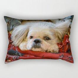 Denali - Loyal Lap-Dog Rectangular Pillow
