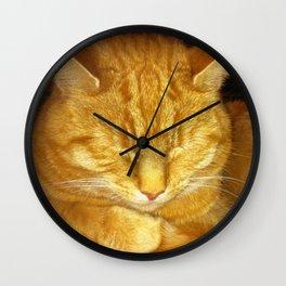 Sleeping Tom Wall Clock