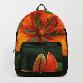 Lily Backpack