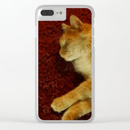 Scully Clear iPhone Case