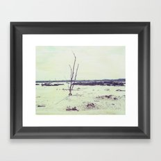 The Mallee Polaroid Framed Art Print