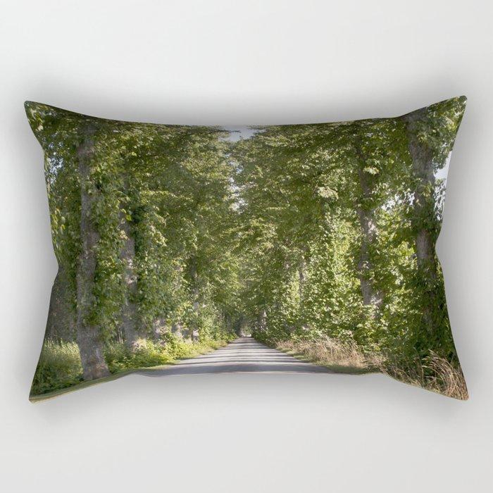 Down the road Rectangular Pillow