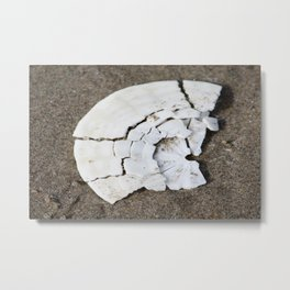 Broken Sand Dollar Metal Print
