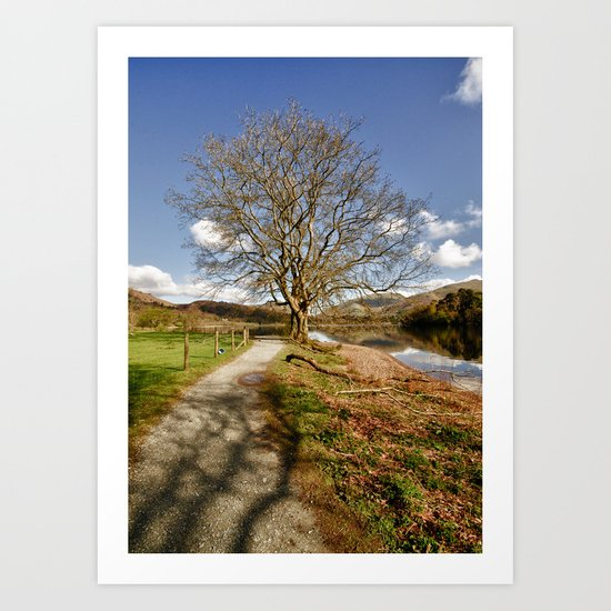 The Grasmere Tree Art Print