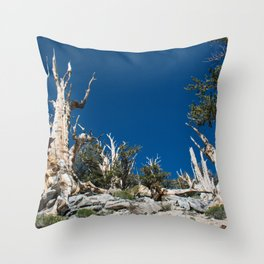 Ancient Bristlecone Pine Forest in California Throw Pillow