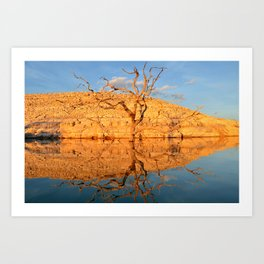 a late afternoon reflection. Art Print
