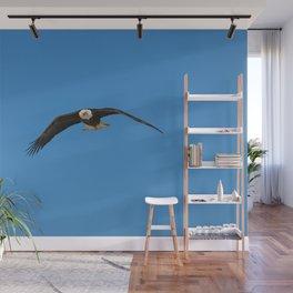 Eagle In Flight - Alaska Wall Mural