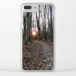 Turn Right at the Setting Winter Sun Clear iPhone Case
