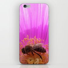 Honey Bee iPhone & iPod Skin