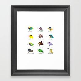 Montane Birds Series 2 Framed Art Print