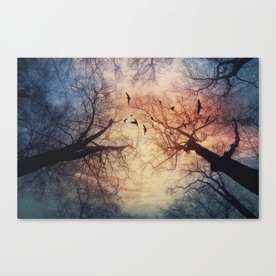 phenomenons Canvas Print