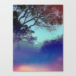 Santa Barbara - The fog rolled in and my mind rolled out. Canvas Print
