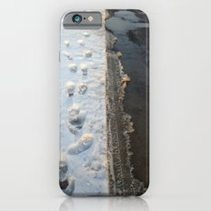winter is gone? iPhone 6s Slim Case