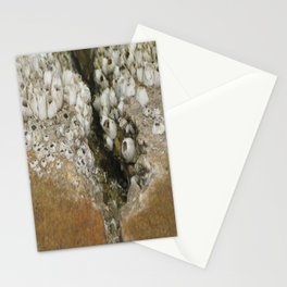 barnicle growth Stationery Cards