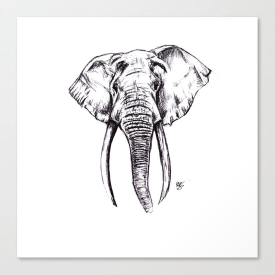 Elephant Drawing Canvas Print