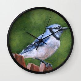 Blue Jay on Fence Wall Clock