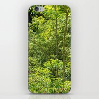 jungle iPhone & iPod Skins featuring Jungle by Mauricio Santana