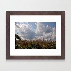Harvest Landscape (Color Layers) Framed Art Print