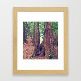 The Elusive Yeti Framed Art Print