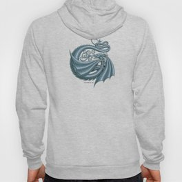 Dragon Letter G, from Dracoserific, a font full of Dragons. Hoody