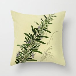 Botanical Rosemary Throw Pillow