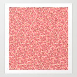 Grapefruit Slice Pattern Art Print