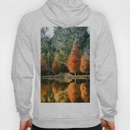 Autumn Reflection Hoody