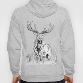 Deer in grass illustration / BW Hoody