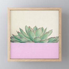 Succulent Dip Framed Mini Art Print