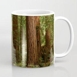 Walking Through The Muir Woods Coffee Mug