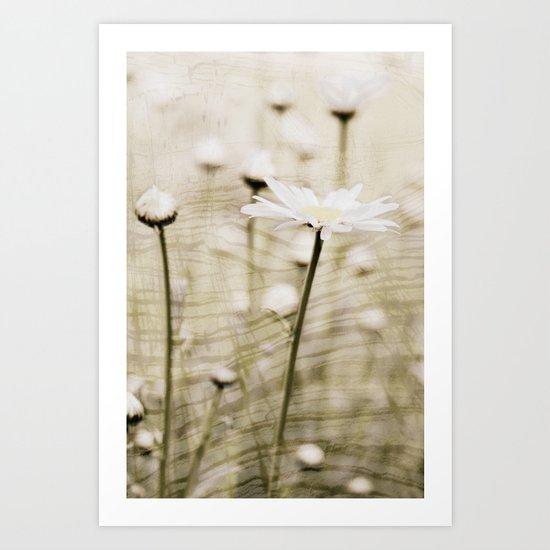 Daisy Fields 4eva Art Print