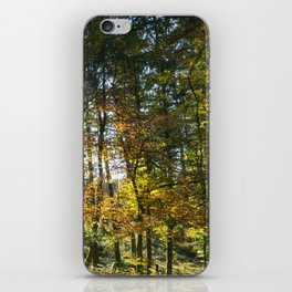 Sundown in a French forest in fall iPhone Skin
