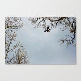 """En vuelo"" Canvas Print"