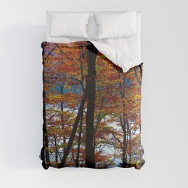 Autumn Forest Comforters