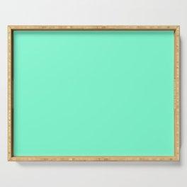 Solid Bright Aquamarine Aqua Blue Green Color Serving Tray