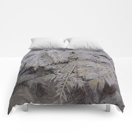 Albino redwood tree Comforters