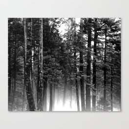 Perfect Silence  Canvas Print
