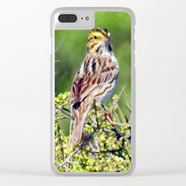 Savannah Sparrow Clear iPhone Case