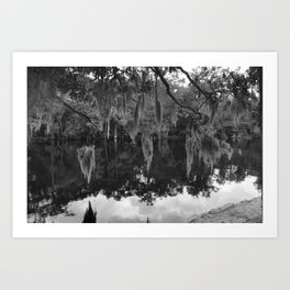 Spanish Moss (Black and White) Art Print