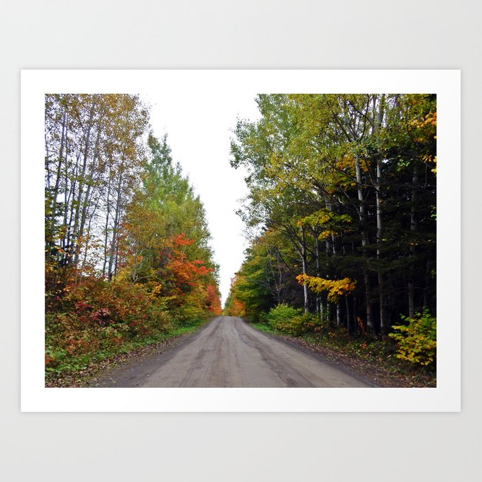 Forest Road in the Fall Art Print