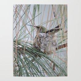 Pine Veil Nesting Poster