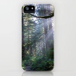 Rain Forest at La Push iPhone Case