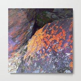 Colorful Moss on Rocks Metal Print
