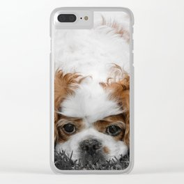 Cavalier King Charles Spaniel Dog Clear iPhone Case