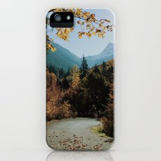 Washington Fall Rd iPhone (5, 5s) Slim Case