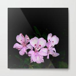 Three pink flowers bouquet Metal Print