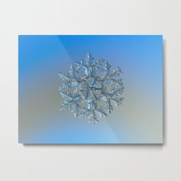 Snowflake photo - Gardener's dream Metal Print