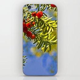 Conifer iPhone Skin
