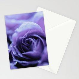 Lavender roses Stationery Cards